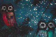 Terre del Reno - Sant'Agostino (fe): Con il naso all'insù a osservare le stelle nel Bosco della Panfilia