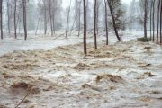 Emilia Romagna e il rischio alluvione: come farsi trovare pronti