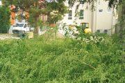San Carlo (Terre del Reno - Fe): 360.000euro per un vasca di laminazione al Centro Civico