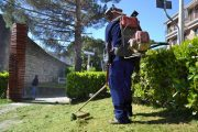 Gavello di Bondeno (fe): la Coop Arte e Spettacolo recede dalla convenzione per la manutenzione aree verdi