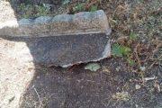 Terre del Reno (fe): chiusa via Mazzini per un albero a rischio caduta