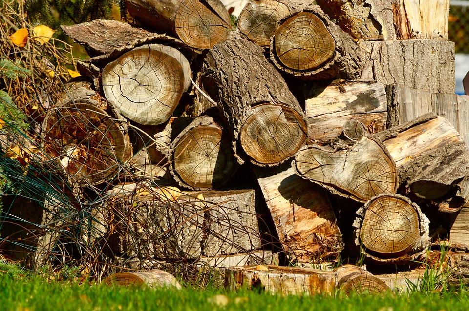Poggio Renatico (fe): fermati a Gallo i ladri di legname