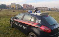 Imola (Bo) - I carabinieri denunciano un