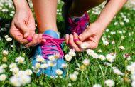 Cento (Fe): ok allo sport, cultura e attività ricreative all'aperto