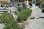 Vigarano Mainarda (Fe) - Lo stato di incuria del cimitero