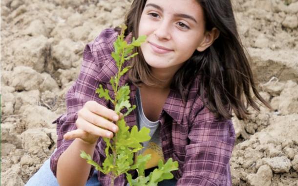 Bondeno (fe): Tanti alberi gratuiti per tutti